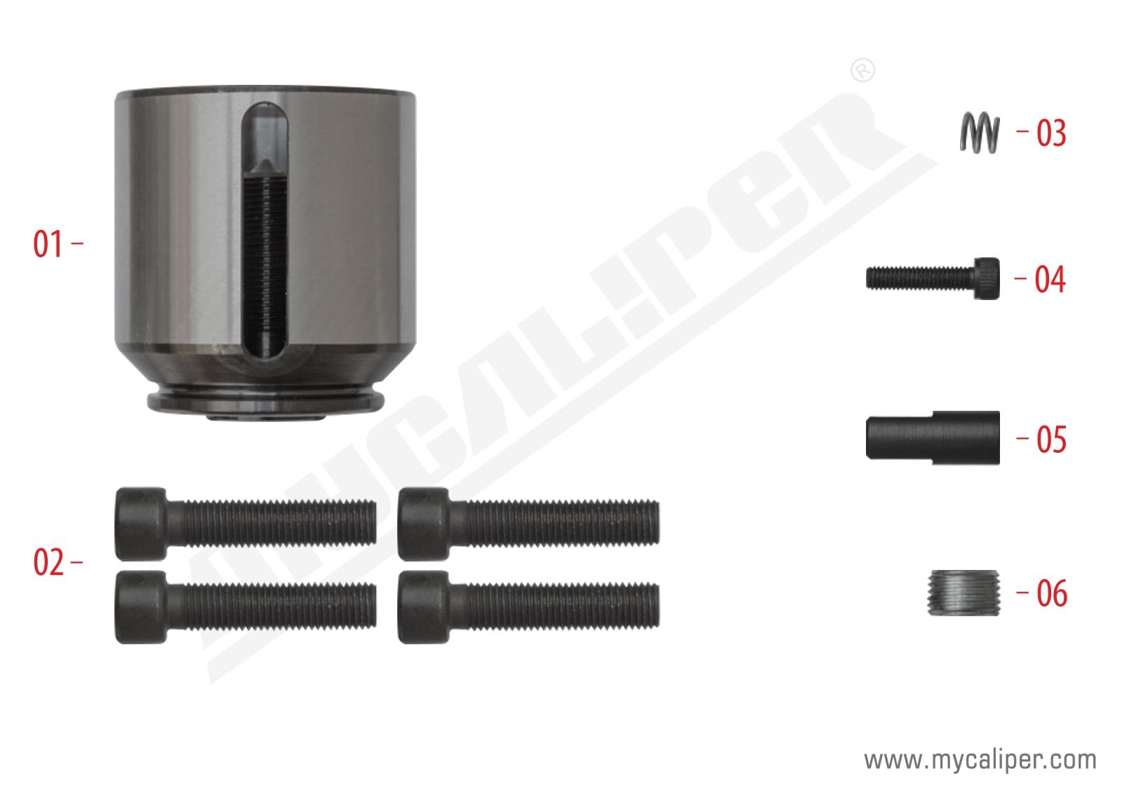 Caliper Piston Kit (Right)