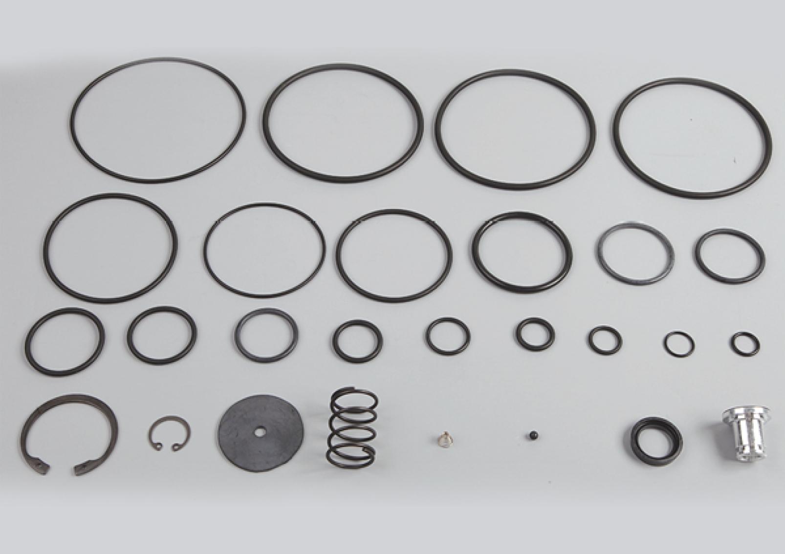 Trailer Control Valve Repair Kit, 355 094 001